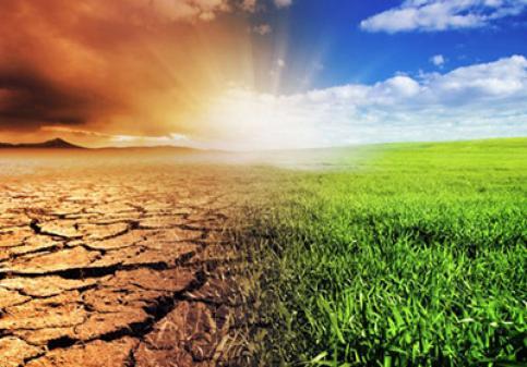 اثر اقلیم بر پراکنش گیاهی
